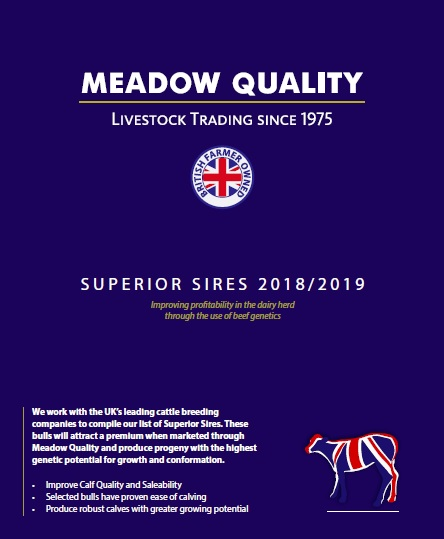 New Superior Sires Brochure!