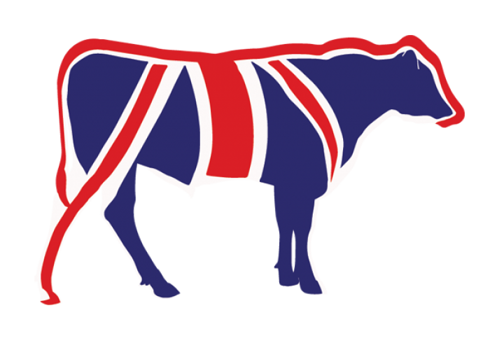MQ-Union-Jack-Bull