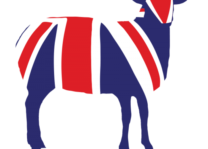 MQ-Union-Jack-Lamb