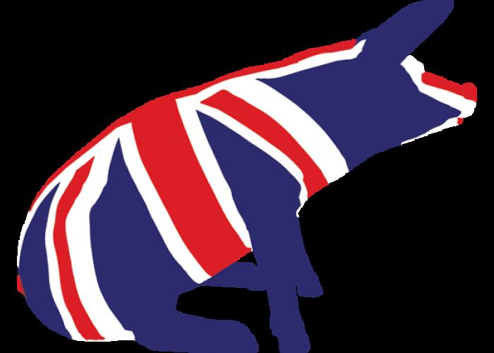 MQ-Union-Jack-Pig