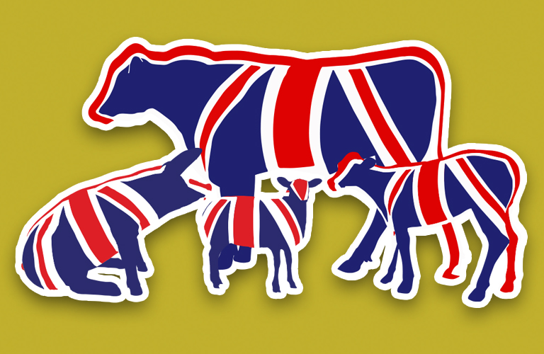 Meadow Quality Union Jack Animals